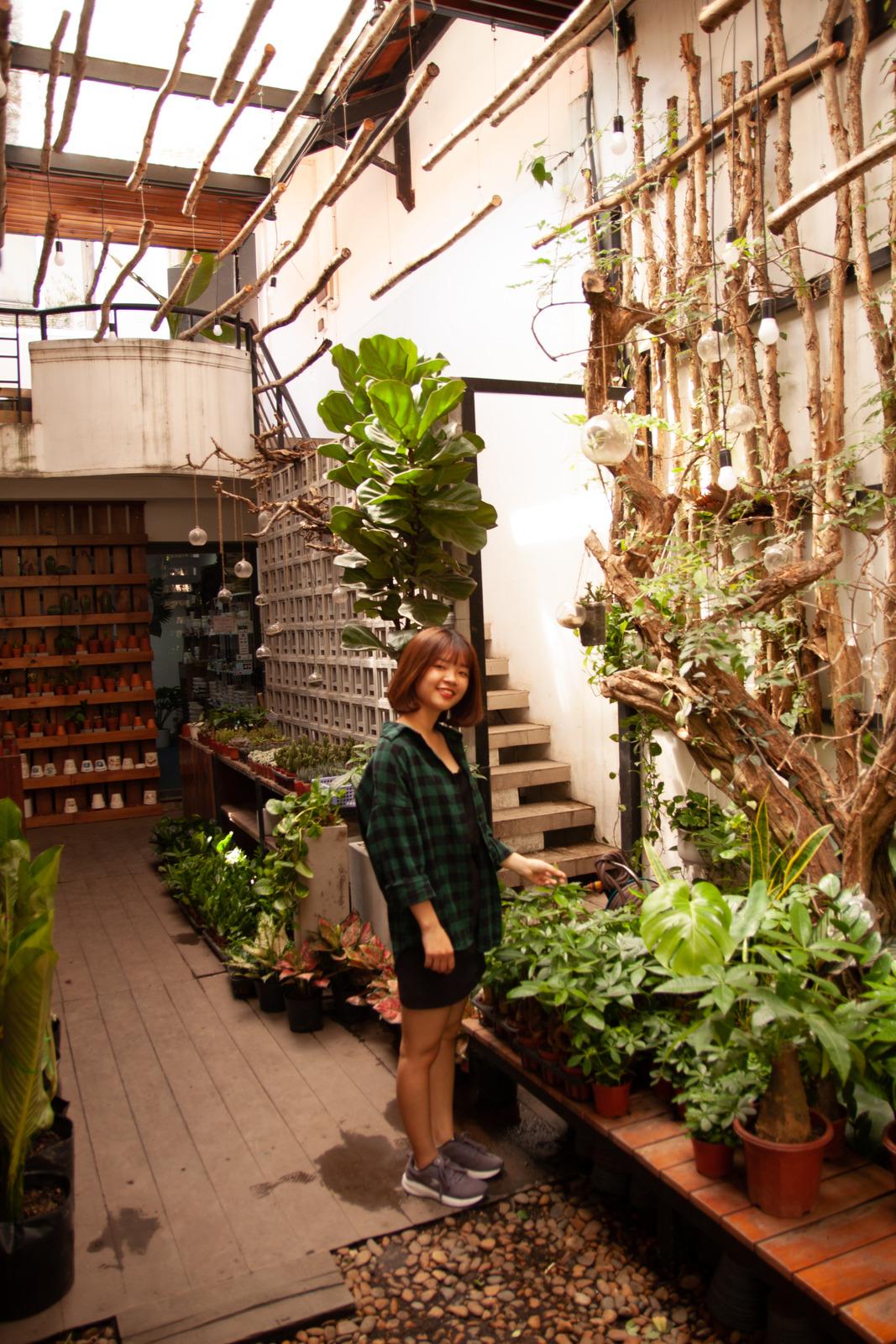 организиране на градината (2)